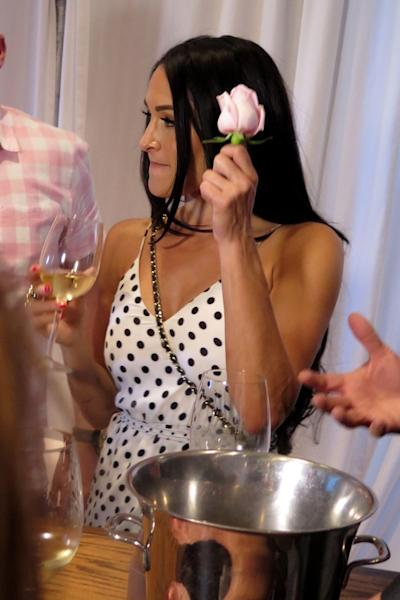 The 'Total Bellas' star and her sister, Brie, hosted a rose party at the Nirvana Food and Wine festival in Arizona on Saturday.