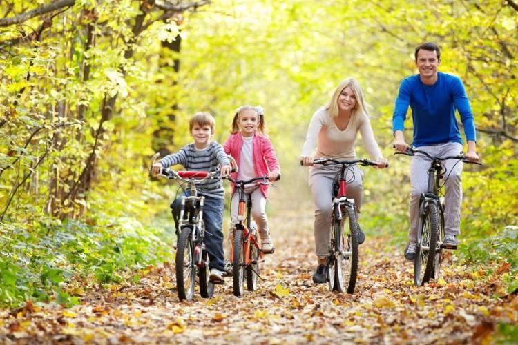 action, activity, adult, autumn, bicycle, bike, cheerful, children, color, cycling, exercising, family, father, female, happiness, healthy, human, kids, leisure, lifestyles, looking, male, men, mother, nature, outdoors, park, people, recreational, smiling, sports, vitality, women