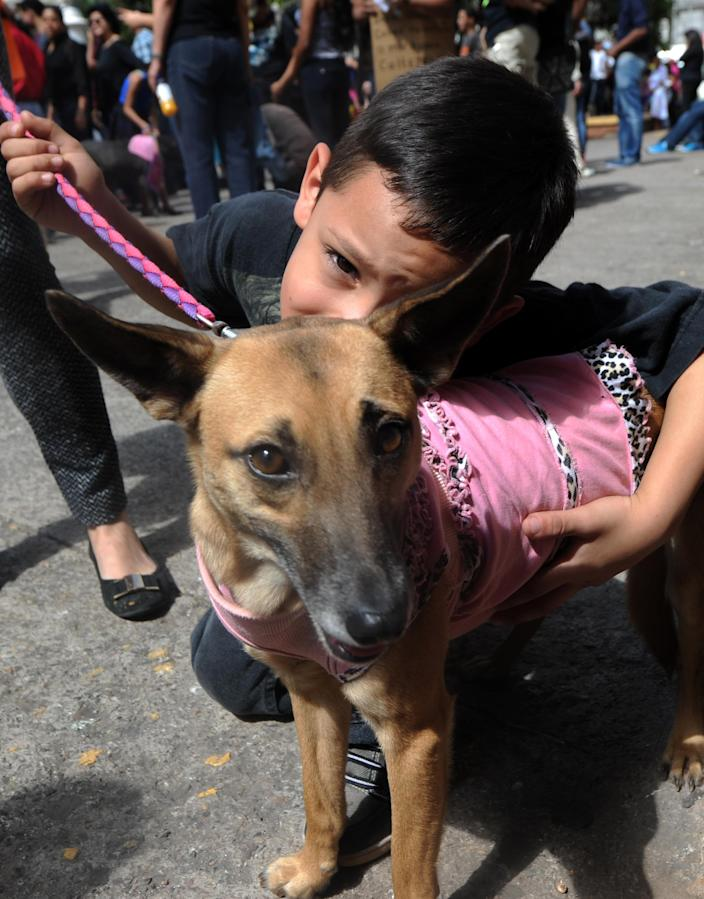 A boy hugs his dog during a gathering to demand a law against animal cruelty in Tegucigalpa on January 20, 2015, after a video of youngsters killing a dog with explosives came to public notice (AFP Photo/Orlando Sierra)