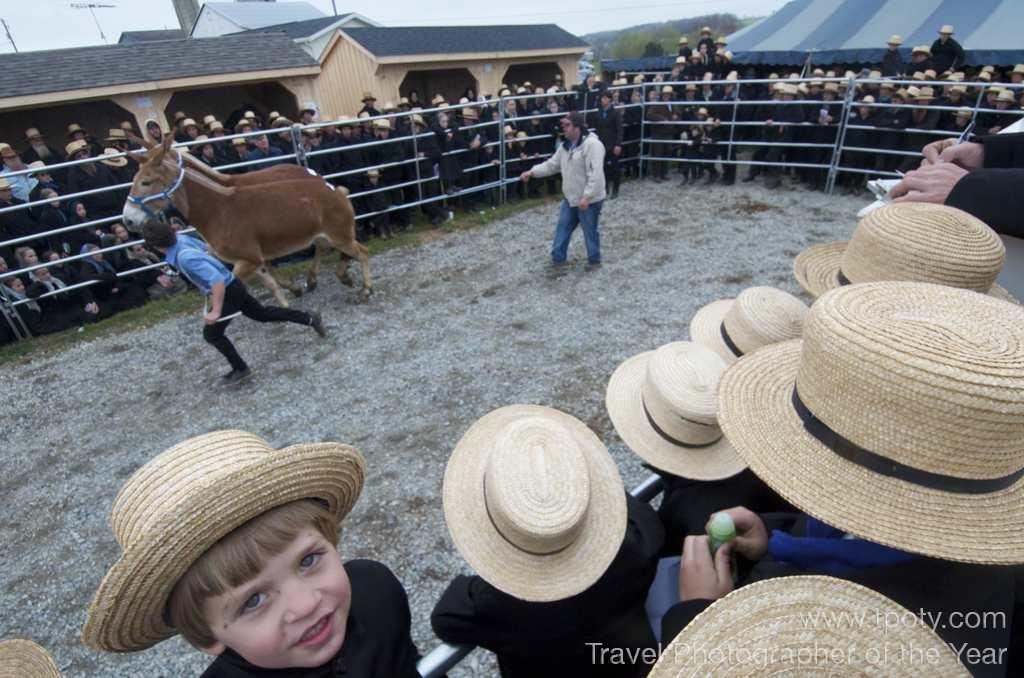 Amish mud sale, Peach Bottom, Pennsylvania, USA <br><br>Chase Guttman, USA (age 16)<br><br>Camera: Nikon D7000 <br><br>Winner, Young Photographers Alliance Award