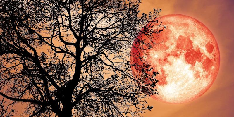 Strawberry Moon 2019: What is it and how is it formed?