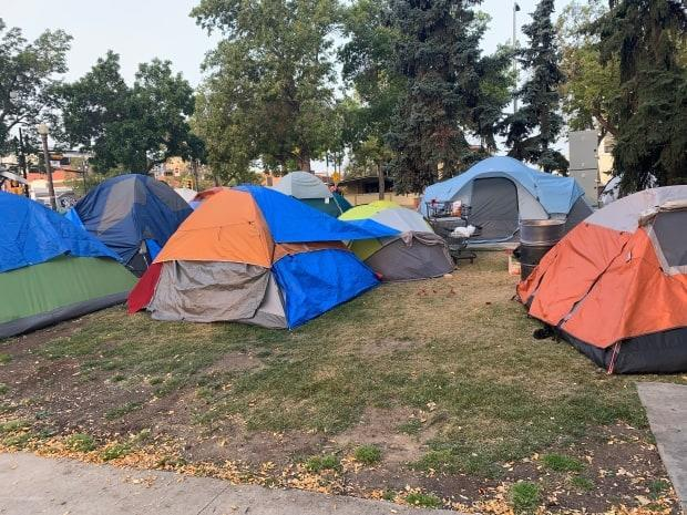 Several encampments surfaced last summer as the COVID-19 pandemic continued.  (Dave Bajer/CBC - image credit)