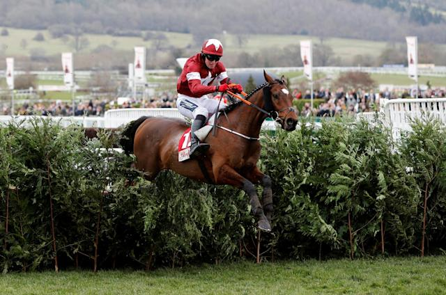 Horse Racing - Cheltenham Festival - Cheltenham Racecourse, Cheltenham, Britain - March 14, 2018 Tiger Roll ridden by K M Donoghue clears the last fence to win the 16:10 Glenfarclas Chase (Cross Country Chase) REUTERS/Darren Staples