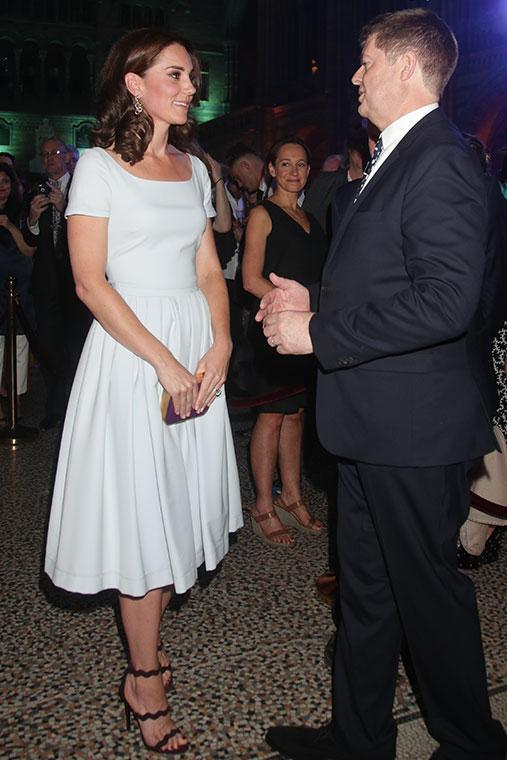 After wowing the world in an elaborate gown at a state dinner earlier this week, Kate was seen in a simple Everly Preen $1065 dress.