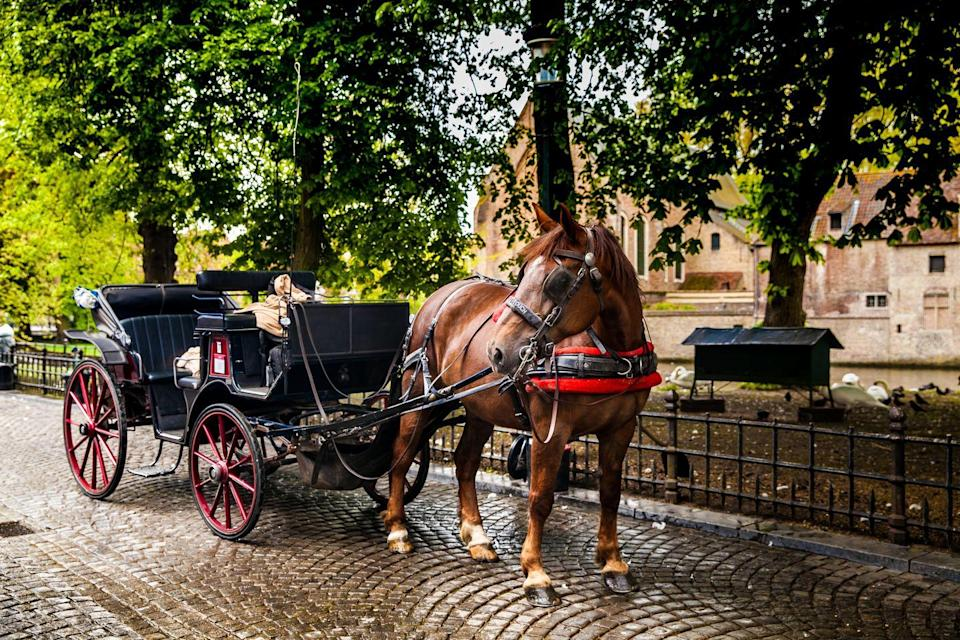 """<p>""""One of the best parts of riding in a horse-drawn carriage is the unspoken sense that the world has slowed down. There's a feeling of safety being transported by a majestic and gentle horse while you and your partner exist in your own little bubble. These moments secrete the chemical oxytocin in our brain, which generates feelings of wellbeing and happiness. Cuddling is also a wonderful non-verbal way to let your partner know they are valued and loved and that you as their partner are invested in the relationship.""""</p>"""