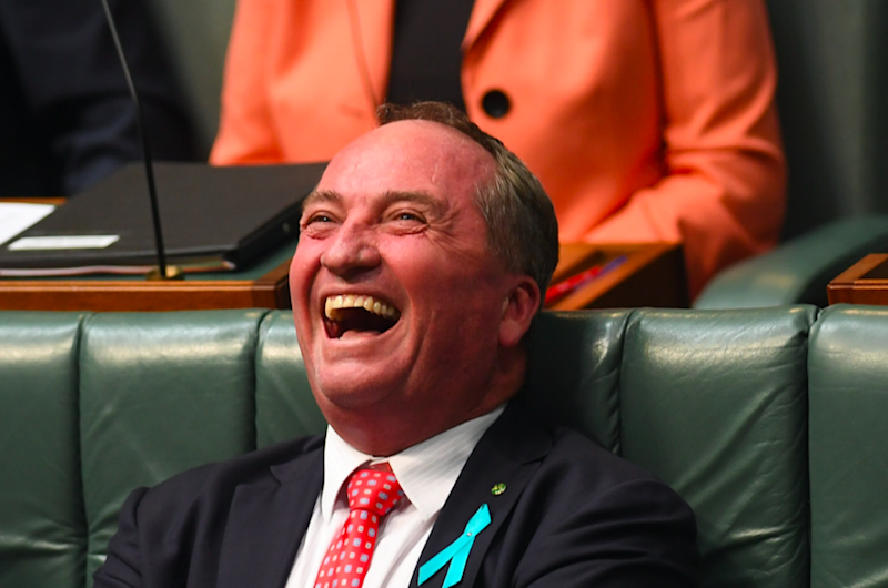 Australia's Deputy Prime Minister Barnaby Joyce's reaction said it all, as the fury erupted during Question Time on February 8. Photo: AAP