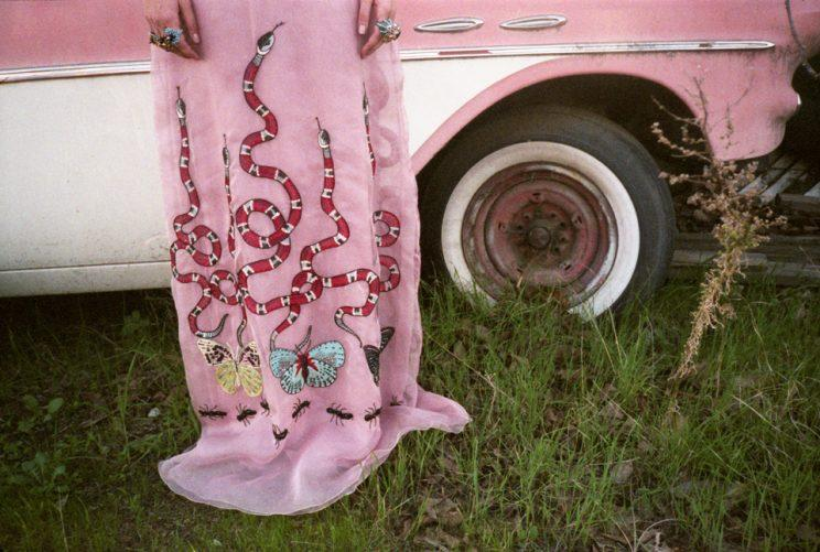 A print from the Gia Coppola x Gucci series