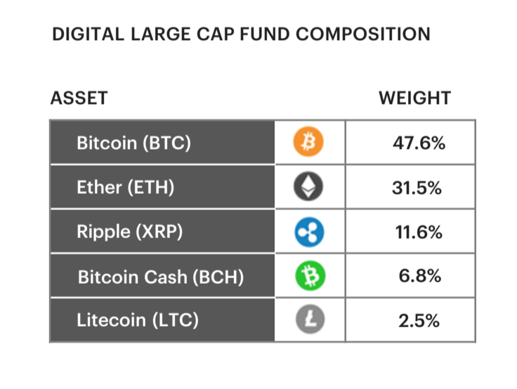 Portfolio weighting of Grayscale's new Digital Large Cap Fund (Grayscale)