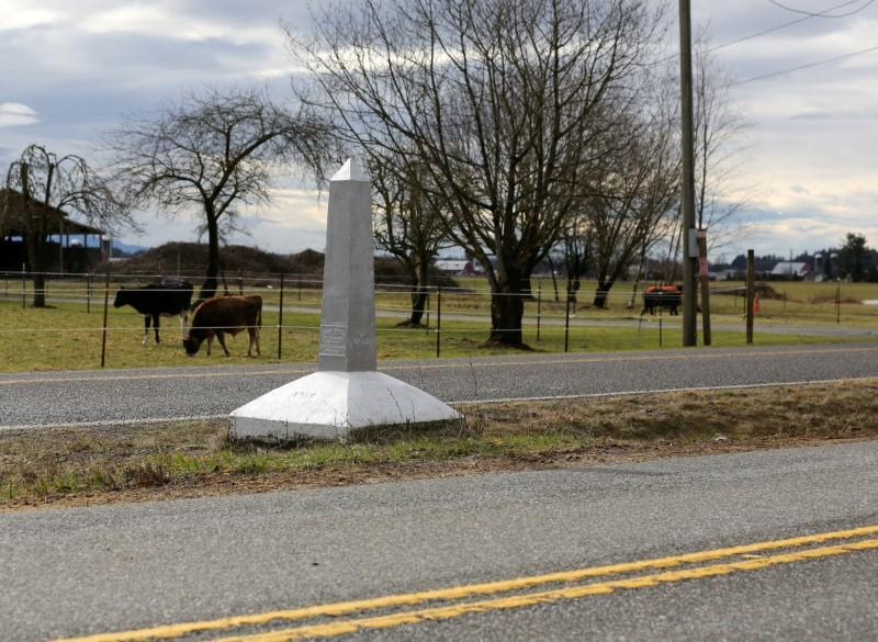 FILE PHOTO: Cattle graze on the United States side of a Canada-U.S. border marker, separating two parallel roads, in Langley