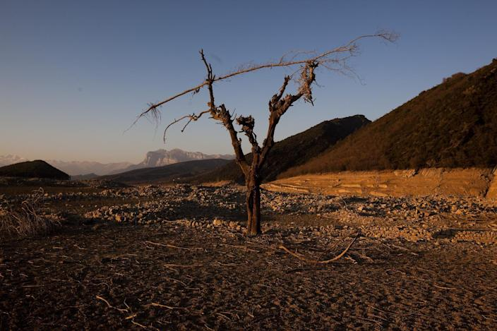 A tree and the remains of an ancient village which are usually covered by water are seen inside the reservoir of Mediano, in Huesca, Spain, Tuesday March 13, 2012. One reservoir built in the 1950s, submerging a village called Mediano and its 16th century church, is so low on water that the ruins of buildings which are usually under water are now uncovered. Spain is suffering the driest winter in more than 70 years, adding yet another woe for an economically distressed country that can scarcely afford it. Thousands of jobs and many millions of euros could be in jeopardy. (AP Photo/Emilio Morenatti)