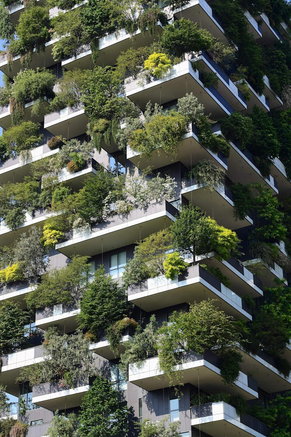 This photograph taken on June 2, 2021, shows a detail of the balconies of the architectural complex called Vertical forest (Bosco Verticale) designed by Studio Boeri in the modern district of Porta Nuova in Milan. (Photo by MIGUEL MEDINA / AFP) (Photo by MIGUEL MEDINA/AFP via Getty Images)