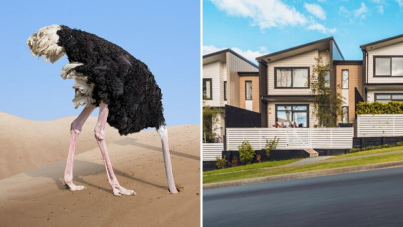 Ostrich burying head in the sand on the left and a row of houses on the right.