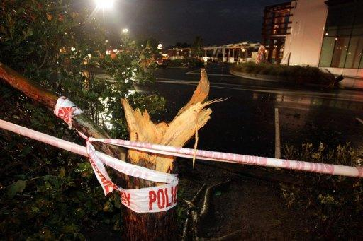 A tornado-smashed tree is seen outside a shopping centre in Auckland after a freak tornado hit the city. A major clean-up has begun as authorities in New Zealand's largest city expressed amazement that the destructive twister resulted in only one death