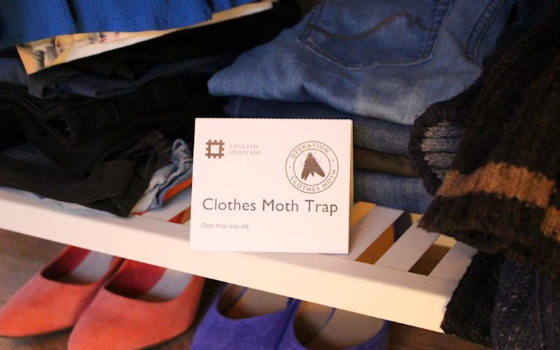 One of the moth traps visitors can take home to monitor the insect in their own homes - Credit: English Heritage