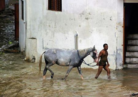 A man wades through water with a horse in a flooded residential colony in Allahabad, India August 23, 2016. REUTERS/Jitendra Prakash
