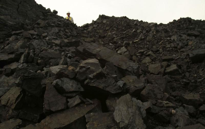 A worker stands near a coal hill which is ready to be mined at the Berau district in Indonesia's East Kalimantan province