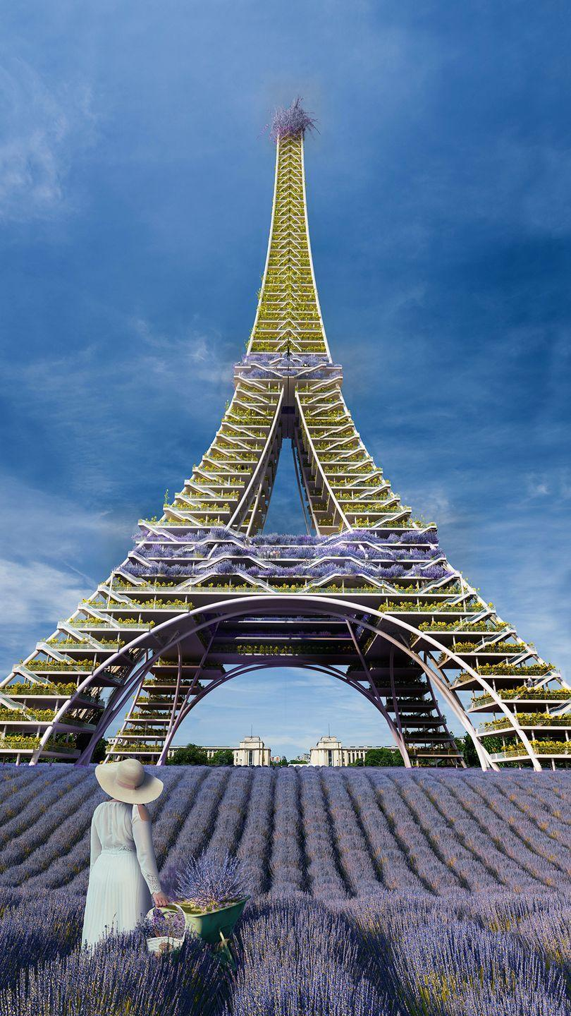 "<p>France's famous landmark has been reimagined with beautiful blooms, including lavender and happy sunflowers. </p><p>Speaking about the <a href=""https://www.housebeautiful.com/uk/decorate/a33633525/oliver-heath-biophilia-plants/"" rel=""nofollow noopener"" target=""_blank"" data-ylk=""slk:biophilic"" class=""link rapid-noclick-resp"">biophilic</a> design, Yaniv Peer, director at <a href=""https://www.iguana-architects.com/"" rel=""nofollow noopener"" target=""_blank"" data-ylk=""slk:Iguana Architects"" class=""link rapid-noclick-resp"">Iguana Architects</a>, says: 'We kept the redesign simple by lining the grounds with lavender, the traditional flower of the French countryside. </p><p>'As you move up the tower, we placed shelves containing bunches upon bunches of sunflowers - France's second most-loved <a href=""https://www.housebeautiful.com/uk/decorate/display/a35418217/dried-flowers/"" rel=""nofollow noopener"" target=""_blank"" data-ylk=""slk:flower"" class=""link rapid-noclick-resp"">flower</a>! Lavender also coats the staircase as well as the observation decks and the very top of the tower, producing a beautiful, purple floral statement.'</p>"