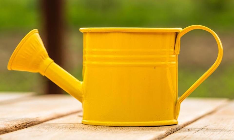 yellow steel watering can painted yellow
