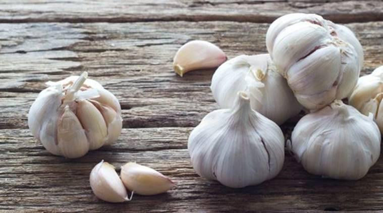 Garlic, chronic infections, lung health indian express, indian express news