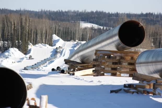 Treaty 8 leaders want a passageway that could be used for electricity transmission lines or for transporting oil, among other uses.
