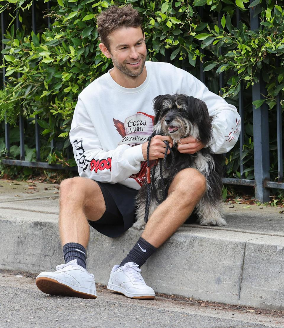 <p>Chace Crawford and his dog Shiner take a break during their morning walk in Southampton, New York on Oct. 12.</p>