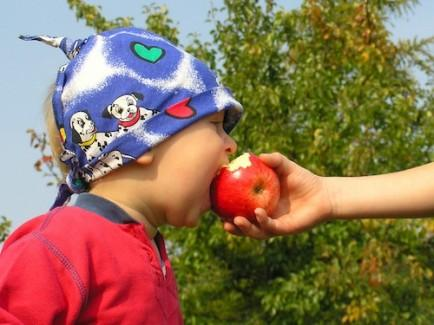 """<div class=""""caption-credit""""> Photo by: Brian Gresko</div><div class=""""caption-title""""></div><b>Eating Healthy</b> <br> Try serving Felix an apple in the middle of the summer and he's quick to tell you, """"These aren't in season right now. I want something fresher. Like blueberries."""" Felix is aware of what fruits and vegetables are in season and where they come from because he hears me and my wife talking about it. This is very different to when I was growing up, when the only food I remember my parents caring about was sugary cereals."""