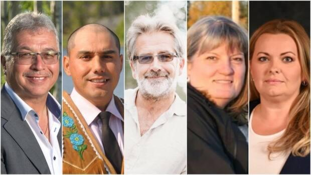 From left to right, Michael McLeod of the Liberal party, Kelvin Kotchilea of the NDP, Roland Laufer of the Green party, Jane Groenwegen as an independent and Lea Mollison of the Conservative party are vying to be the next MP for the Northwest Territories.  (Michael McLeod/Facebook, Submitted by Kelvin Kotchilea, Roland Laufer/Facebook, Submitted by Jane Groenewegen, Submitted by Matthew Lakusta - image credit)