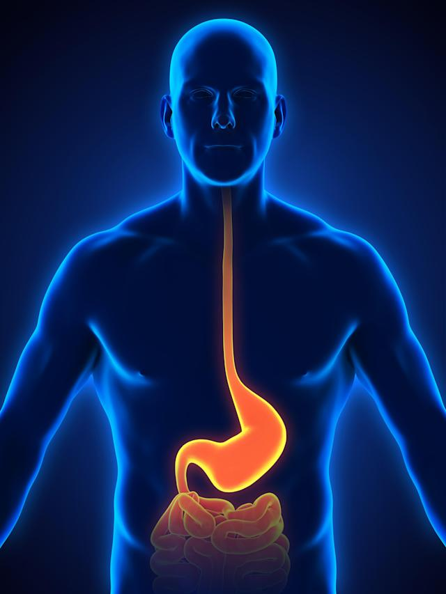 Gastrointestinal conditions can affect the oesophagus down to the intestines. (Getty Images)