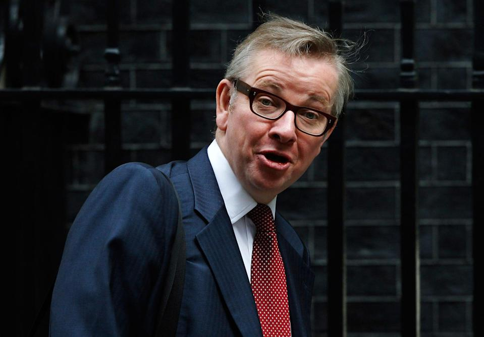 <p>Cabinet Office minister Michael Gove</p> (Reuters)
