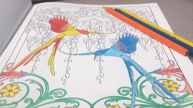 Adult Colouring Books All The Rage