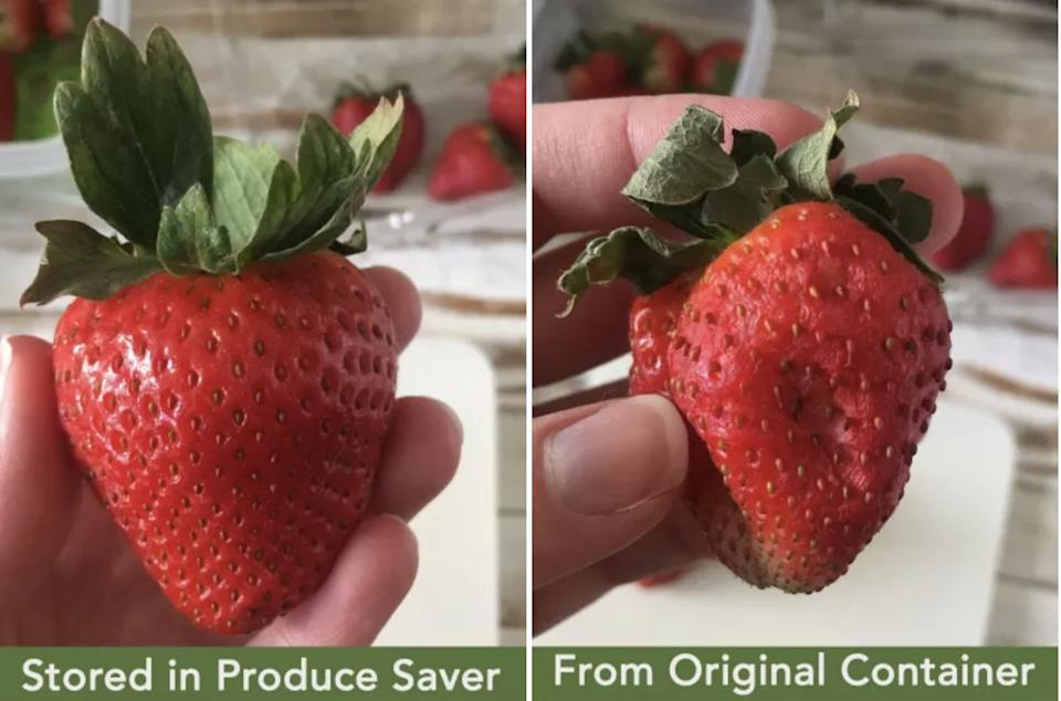 """These containers are made with venting technology to keep produce fresh for up to 80% longer. The vents regulate the flow of oxygen and carbon dioxide and keep moisture away so your strawberries taste freshly picked days and days and days later.<br /><br /><strong>Promising review:</strong>""""I read the reviews and thought I'd give these a try since they here easily half the price of the other ones I looked at that had to have the charcoal filters replaced periodically. These need no filter changes and oh-my-gosh, they work! I went on a 10 day trip to visit my mom and left my husband home with asparagus, strawberries, and spinach in the containers. He ate some of all of them, but there was plenty left when I got back and they were in perfect condition! I couldn't believe it!<strong>These will save us a lot of money not throwing away food because we couldn't get through it fast enough. (We shop at Costco and get large containers of produce.)</strong>These are TOTALLY worth getting and I will be getting a few more sizes. Excellent product!!!"""" —<a href=""""https://www.amazon.com/dp/B01BD166DY?tag=huffpost-bfsyndication-20&ascsubtag=5883859%2C38%2C54%2Cd%2C0%2C0%2C0%2C962%3A1%3B901%3A2%3B900%3A2%3B974%3A3%3B975%3A2%3B982%3A2%2C0%2C0"""" target=""""_blank"""" rel=""""noopener noreferrer"""">Elizabeth Walter</a><br /><strong><br />Get them from Amazon for<a href=""""https://www.amazon.com/dp/B01BD166DY?tag=huffpost-bfsyndication-20&ascsubtag=5883859%2C38%2C54%2Cd%2C0%2C0%2C0%2C962%3A1%3B901%3A2%3B900%3A2%3B974%3A3%3B975%3A2%3B982%3A2%2C0%2C0"""" target=""""_blank"""" rel=""""noopener noreferrer"""">$6.71+</a>each (available in five sizes and in sets of multiples).</strong><br /><br /><i>Plus, check out BuzzFeed's<a href=""""https://www.buzzfeed.com/nataliebrown/rubbermaid-freshworks-containers-review-make-produce-last?utm_term=.nr54Xkl32#.gpQYwbgNn"""">full review</a>of these game-changing containers!</i>"""