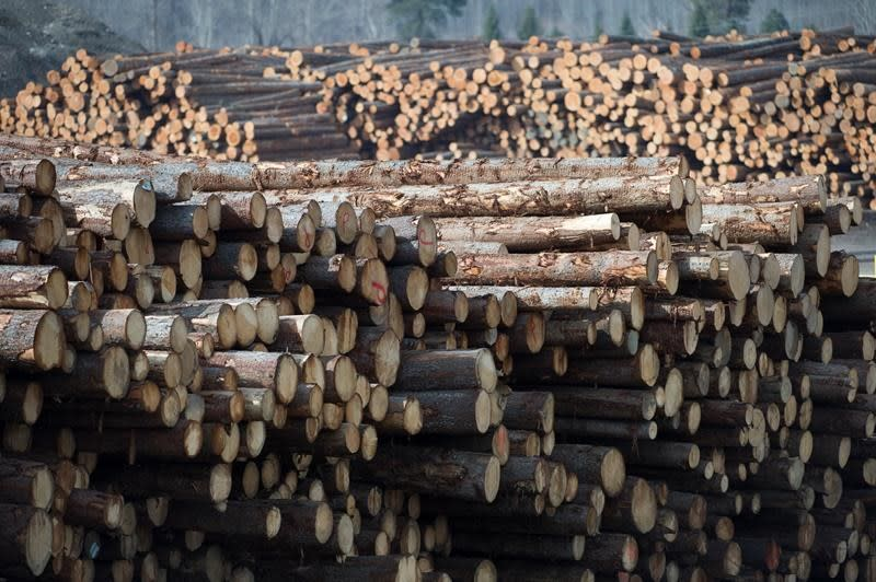 Canadian producers cheer, U.S. denounces WTO decision on softwood lumber
