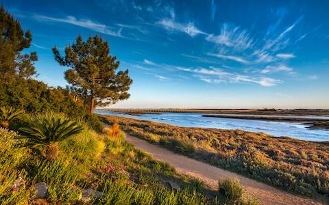 the Ria Formosa Nature Reserve - Credit: Getty