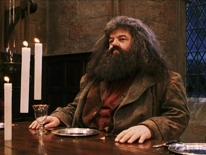 HAGRID HARRY POTTER