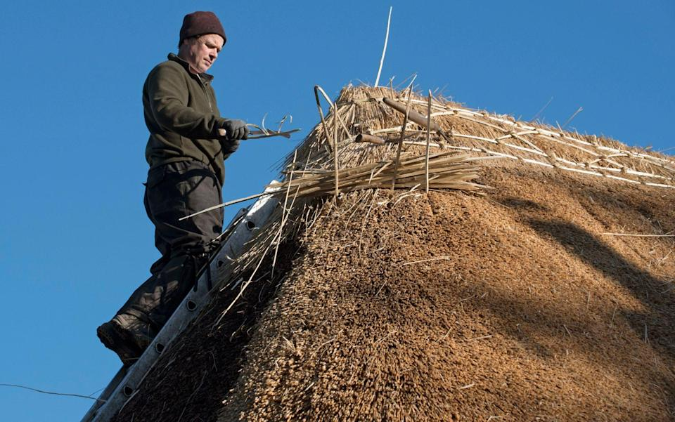 A thatcher works on the ridge of a traditional thatched roof - Education Images/Universal Images Group via Getty Images