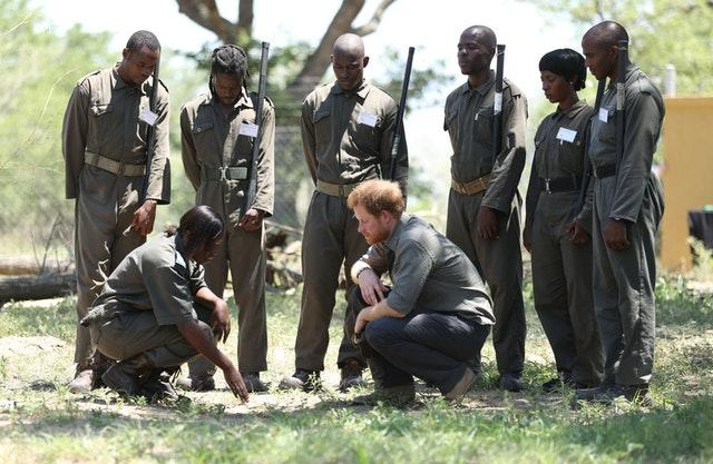 Harry in South Africa