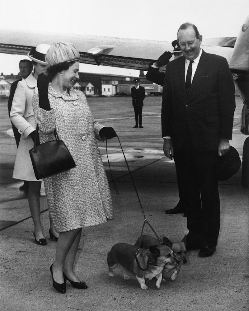 Queen Elizabeth II with two corgis and Princess Anne on the runway of an airport in London, 1969.