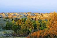 """<p><strong>Where to go:</strong> The striped canyons and changing prairie of the Little Missouri Grasslands house tons of wildlife, including elk, antelopes, whitetail and mule deer, bighorn sheep, coyotes, greater prairie chickens, eagles, falcons, and prairie dogs. </p><p><strong>When to go:</strong> Mid-October</p><p><a class=""""link rapid-noclick-resp"""" href=""""https://go.redirectingat.com?id=74968X1596630&url=https%3A%2F%2Fwww.tripadvisor.com%2FHotels-g28955-North_Dakota-Hotels.html&sref=https%3A%2F%2Fwww.redbookmag.com%2Flife%2Fg34045856%2Ffall-colors%2F"""" rel=""""nofollow noopener"""" target=""""_blank"""" data-ylk=""""slk:FIND A HOTEL"""">FIND A HOTEL</a></p>"""