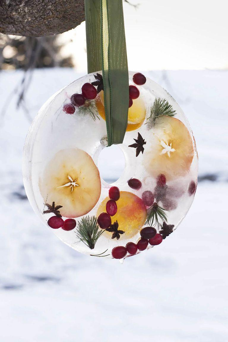 """<p>If you live in a place where you can depend on nature as your outdoor freezer around the clock, whip up beautiful DIY wreaths and holiday decor using organic objects encased in ice. Think evergreen needles, cranberries, apple slices — and pretty ribbon for hanging.<br></p><p><strong><em><a href=""""https://www.womansday.com/home/crafts-projects/a61054/how-to-make-bird-feeder-ice-wreath/"""" rel=""""nofollow noopener"""" target=""""_blank"""" data-ylk=""""slk:Get the Winter Ice Bird Feeder Wreath tutorial."""" class=""""link rapid-noclick-resp"""">Get the Winter Ice Bird Feeder Wreath tutorial.</a></em></strong></p>"""