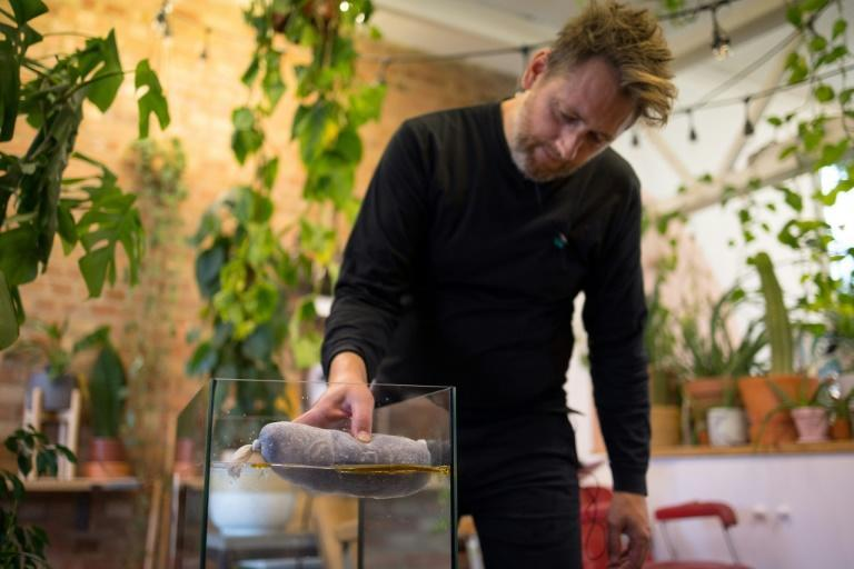 Co-founder of the Green Salon Collective Fry Taylor shows how a cotton net stuffed with hair, swept across the surface of a tank of water contaminated with motor oil, instantly cleans up the pollutant