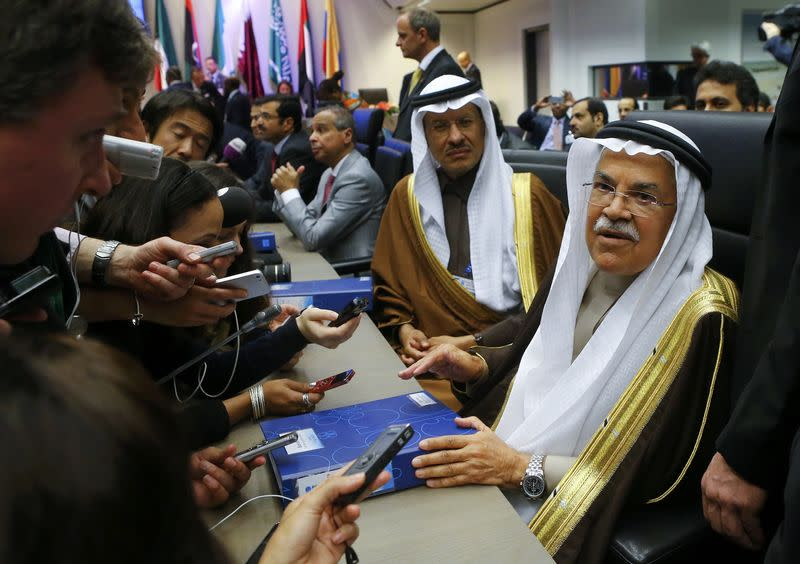 Saudi Arabian Oil Minister al-Naimi talks to journalists during a meeting of OPEC oil ministers in Vienna