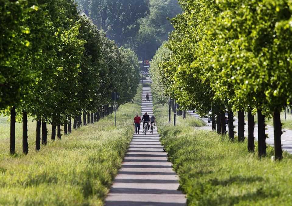 FILE - In this May 11, 2016,file photo, two cyclists pedal through an alley of small trees in Frankfurt, Germany. A Massachusetts Institute of Technology project called Treepedia, that maps trees in the world's major cities, is making it easier to determine where more green is needed. Trees play a critical role in urban environments, helping keep cities cool, mitigating air and noise pollution and just making them more pleasant places to live and work. (AP Photo/Michael Probst, File)