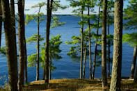 """<p><strong>Best camping in Minnesota:</strong> Woodenfrog Campground, Kabetogama State Forest</p> <p>As one of the only water-based parks in the system, finding a launchpad for <a href=""""https://www.cntraveler.com/story/a-guide-to-stargazing-in-minnesotas-voyageurs-national-park?mbid=synd_yahoo_rss"""" rel=""""nofollow noopener"""" target=""""_blank"""" data-ylk=""""slk:Voyageurs National Park"""" class=""""link rapid-noclick-resp"""">Voyageurs National Park</a> can challenge the most seasoned road tripper. Our tip: Rent a boat from a local operator, and set off for the Ellsworth Rock Gardens and the tiny, deserted islands of Lake Kabetogma. Or, simply splash around in the lake's warm waters at Woodenfrog's own swimming beach.</p>"""
