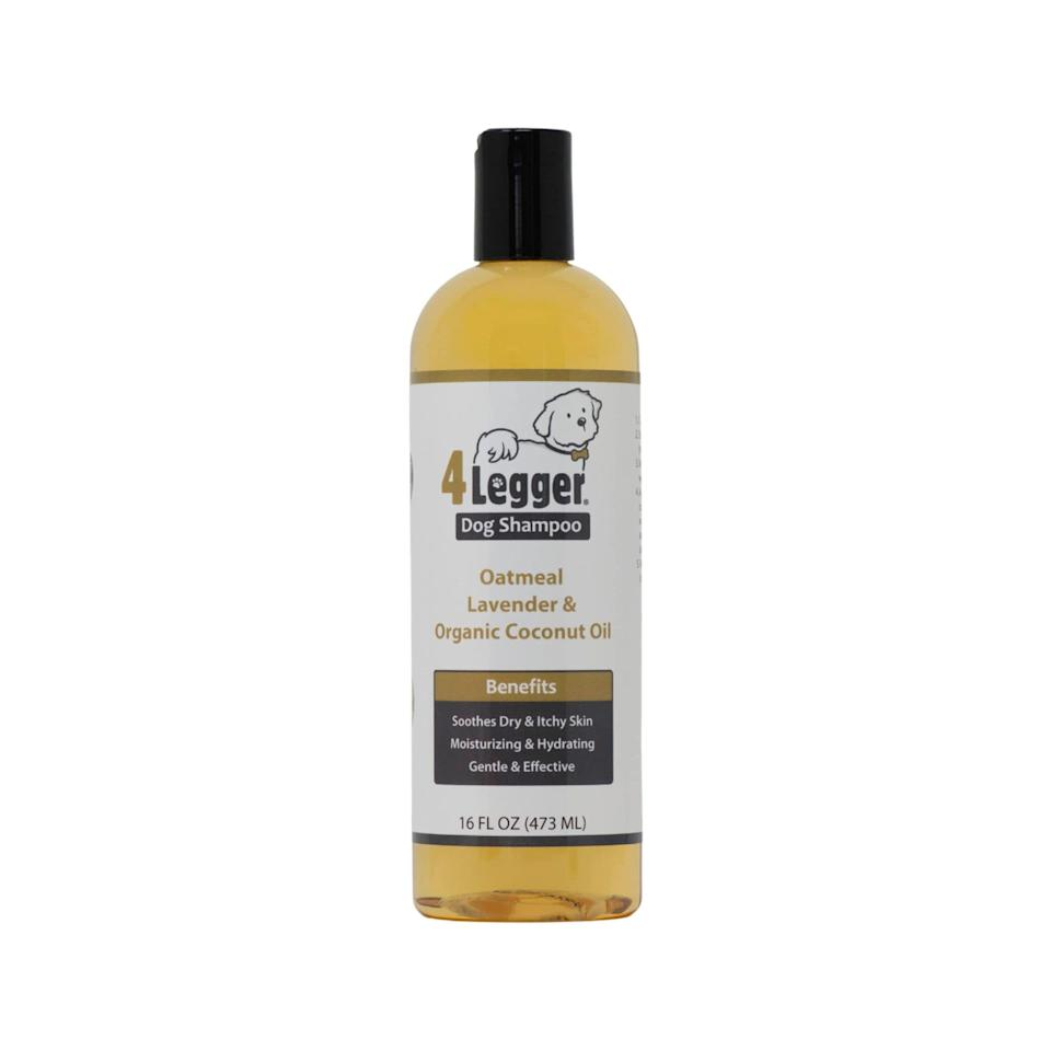"""<p><strong>4Legger </strong></p><p>amazon.com</p><p><strong>$15.98</strong></p><p><a href=""""https://www.amazon.com/dp/B01DT57FRI?tag=syn-yahoo-20&ascsubtag=%5Bartid%7C2164.g.36563635%5Bsrc%7Cyahoo-us"""" rel=""""nofollow noopener"""" target=""""_blank"""" data-ylk=""""slk:Shop Now"""" class=""""link rapid-noclick-resp"""">Shop Now</a></p><p>This certified organic dog shampoo helps moisturize skin, relieve itchiness, and remove environmental toxins from your pup's coat. What more could you want?</p>"""