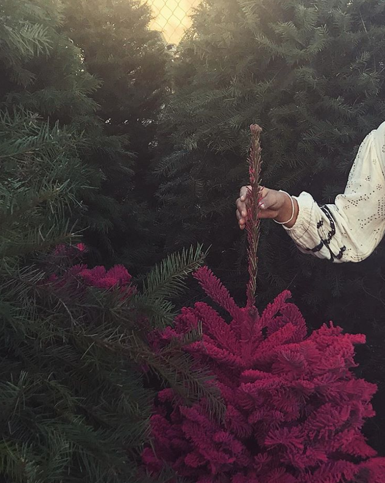 """<p><span>""""Everything's better in PINK,"""" Berry wrote alongside her pick for this year's tree. </span> (Photo: <a rel=""""nofollow"""" href=""""https://www.instagram.com/p/BciRLEsgfGa/?hl=en&taken-by=halleberry"""">Halle Berry via Instragram</a>) </p>"""