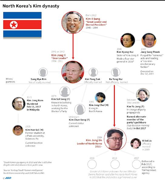 Graphic on North Korea's ruling dynasty. (AFP Photo/Gal ROMA)