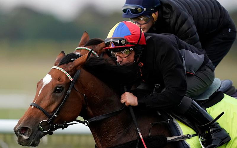 Frankie Dettori rides Enable on the Rowley Mile course at Newmarket last week as they prepare for the Arc - Getty Images Europe