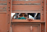 A man looks on as migrant laborers returning from other states, many of whom have been walking and hitchhiking travel on the back of a truck as they try to reach their native villages in Prayagraj, India, Sunday, May 10, 2020. Though the government started running trains to carry stranded workers to their home states, lack of trains has led many to walk back. (AP Photo/Rajesh Kumar Singh)