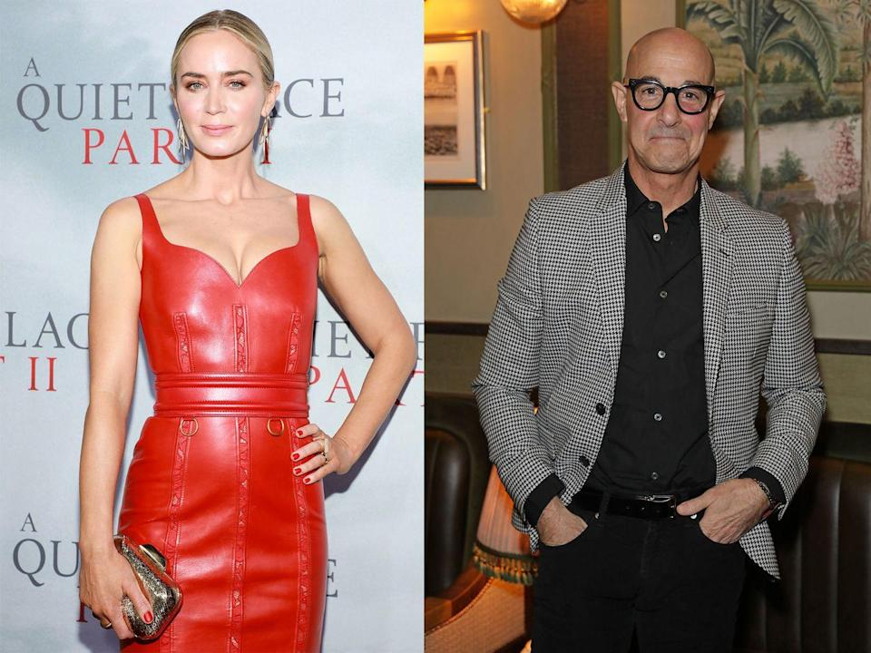 <p>After meeting on the set of The Devil Wears Prada, Stanley Tucci attended Emily Blunt's wedding to John Krasinski in 2010, where he met Emily's sister, Felicity.</p><p>The couple wed in 2012, which means Stanley is now Emily's brother-in-law.</p>