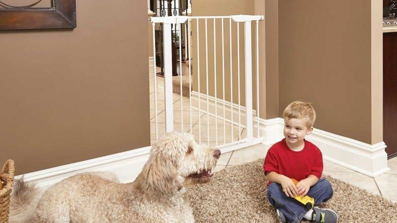 Pet gates keep animals out of rooms where they don't belong.